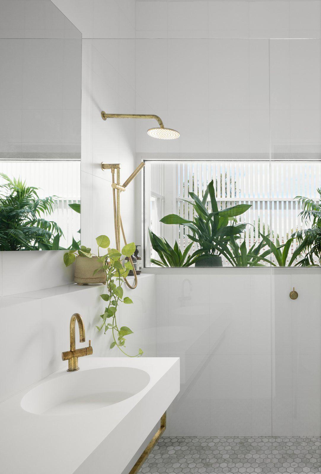 Vannituba kujundusideed LINTMAN taimed vannitoas