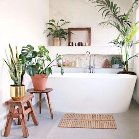taimed vannitoas
