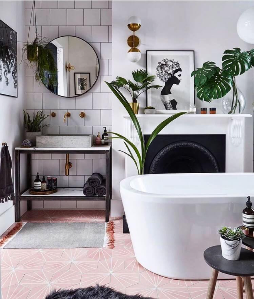 taimed vannitoas vannitoa dekoratsioonid